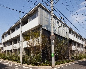 AkimotoPJ